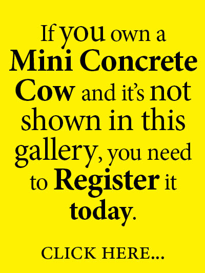 If you own a Mini Concrete Cow and it's not shown in this gallery, you need to Register it today. Click here...